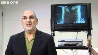 Alan Yentob endorses 'Walk On The Wild Side' - BBC One