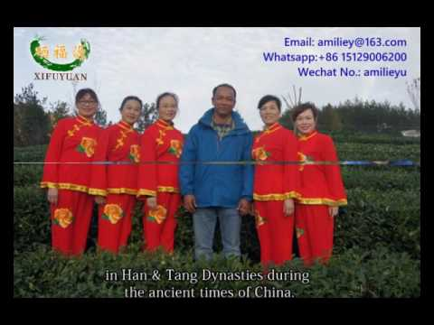 Ziyang rich selenium Tea-XIFUYUAN