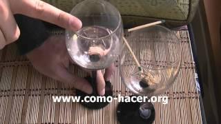 Experimento casero sorprendente - Movimiento mediante sonido