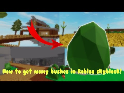 How To Get Many Berry Bushes In Roblox Skyblock Patched Youtube