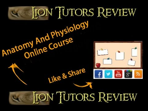 Anatomy And Physiology Online Course - YouTube