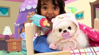 BIA LOBO BABÁ DO CACHORRO / Pretend Play With Dog Nanny