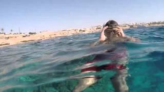 Как мы купались среди рыбок в Красном море. Египет, поездка октябрь 2015