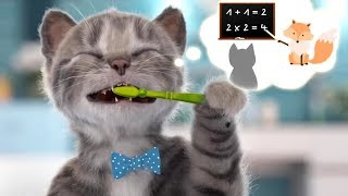 Lindo Gatito Preescolar Aventuras - Nuevo Gatito Juegos | Dibujos Animados Infantiles
