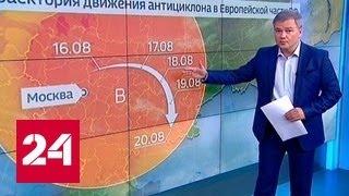 """""""Погода 24"""": атмосферное давление в Москве вновь бьет рекорды"""