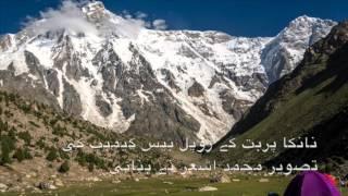 وکی پاکستان انٹری
