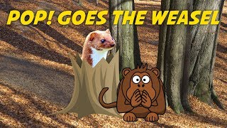 Pop! Goes the Weasel | Free Nursery Rhyme Karaoke (instrumental with lyrics)