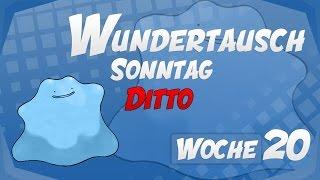 Wundertausch Sonntag-Special - Woche 20 (Ditto) - Pokémon Omega Rubin und Alpha Saphir (ΩR/αS)
