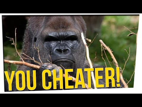 This Gorilla Knows How to CHEAT in Puzzle Games ft. All Male Cast