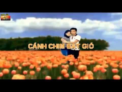 Karaoke :Cánh Chim Bạt Gió / Nhạc hoa