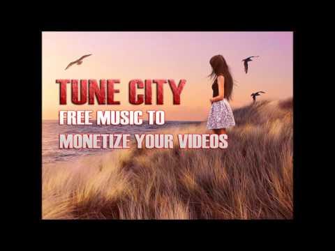 | FREE Electro House Music | DJ Niton - Shen Returns