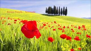 Enrico Toselli : Serenade トセリ:嘆きのセレナーデ