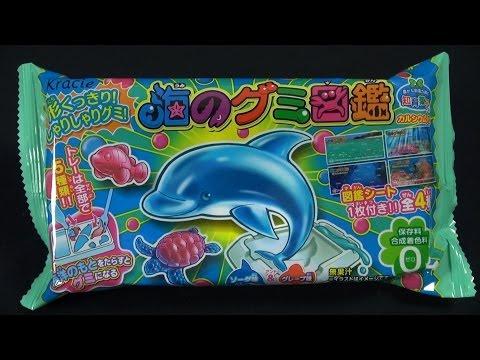 kracie---marine-life-gummy-(diy)