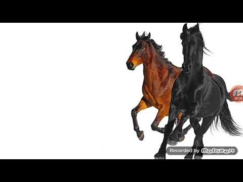 lil-nas-x--old-town-road-[feat.-billy-ray-cyrus]-(remix)