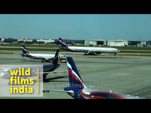 Aeroflot plane enters parking bay at Sheremetyevo airport, Moscow