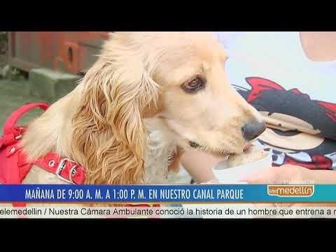 Mascotas al Parque este sábado en canal parque Gabriel García Márquez  [Noticias] - Telemedellín
