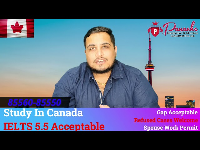 Canada Study Visa   Spouse Open Work Permit   Fees After Visa   Panache Immigration   85560-85550