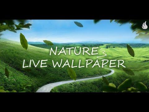 Nature Live Wallpaper - YouTube