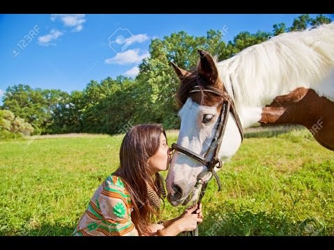Girls and horse--funny video thumbnail