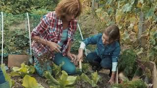 Healthy life center | gardening