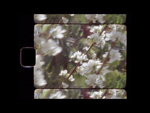 Alison Sudol - Enough Honey (Official Video)