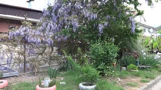 видео Гостевой дом в Лоо