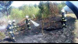 [Helmet Cam] Pożar lasu i młodnika - gaszenie - Alarmowo OSP Glinojeck
