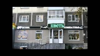 г.Екатеринбург, ул.Техническая 27.