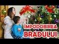 Impodobirea Bradului 2016 Alex si Mama impodobesc Bradul de Craciun