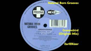 Natural Born Grooves - Groovebird (Original Mix)