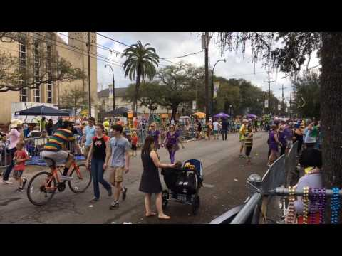 Mardi Gras ParadeCam 2017: Rex