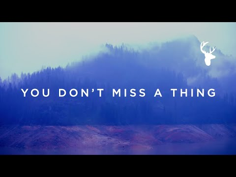 You Don't Miss A Thing // Amanda Cook // We Will Not Be Shaken Official Lyric Video