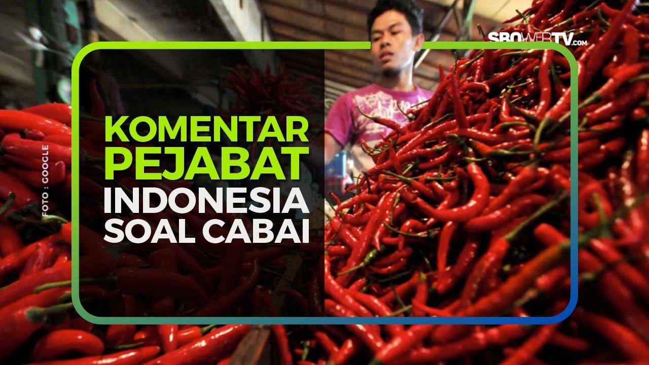 KOMENTAR PEJABAT INDONESIA SOAL CABAI