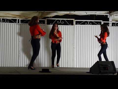 Baile flamenco fiestas del Zaidin Granada