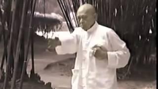 Gran Maestro Pan Nam Wing Chun