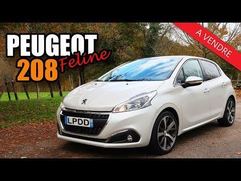 Peugeot 208 Féline | Voiture pour jeune conducteur ?