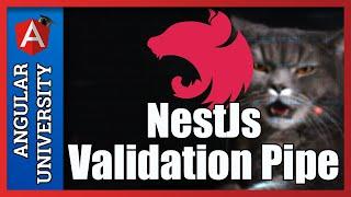 💥 NestJs Data Validation with ValidationPipe