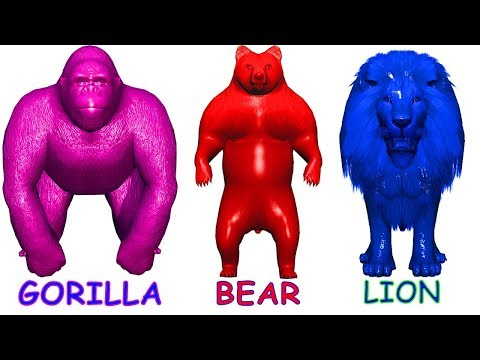 Learn Colors Learn Animals Name and Sound for Kids - Learning Video Educational for Children