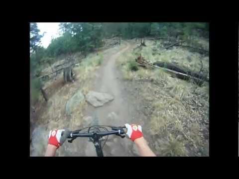Wasabi Downhill MTB