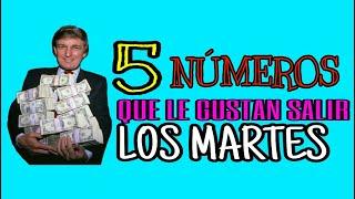 5 NÚMEROS QUE LOS MARTES SALEN
