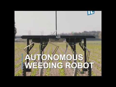 Autonomous Weeding Robot
