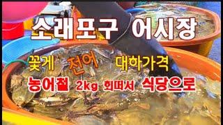 소래포구 어시장 농어회 싸게 먹기, 꽃게가격, 전어가격…