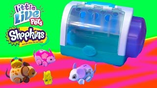 Shopkins Season 3 Taco Terrie Chee Zee Ride Little Live Pets 'Lil Mouse Toy Unboxing Review Video