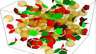 Virus Assembly Model