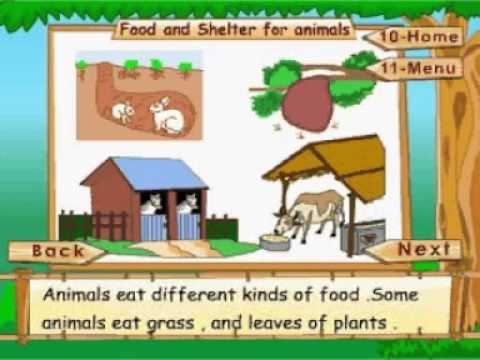 Learn Science Class 1 Animal Life Food And Shelter