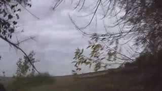 Охота на куропаток с подхода видео