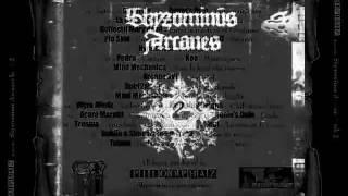Spiri2all - Education internationale (Skyzominus Arcanes Book 2)