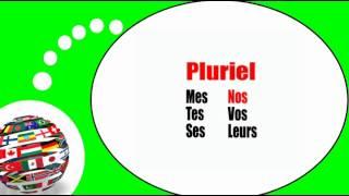 Французского видео урок = Множественное притяжательные прилагательные