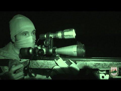 Kentucky Night-Time Coyote Hunting Regulations – Rifle and Shotgun