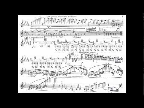 Sibelius, J. mvt1(begin) violin concerto